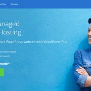 BlueHost WordPress Pro Hosting Review: Is this the best managed WordPress hosting? Online Marketing WordPress