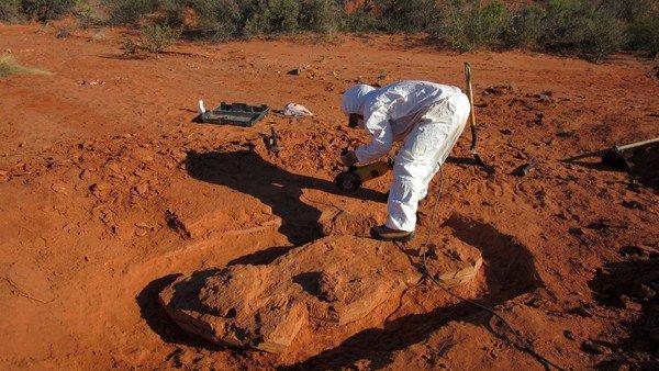 Hallaron en San Juan al dinosaurio gigante más antiguo que habitó la Tierra