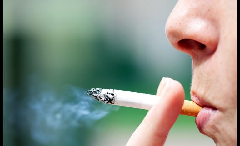 Comenzó a regir ordenanza que prohíbe fumar en parques y plazas de Las Condes