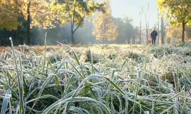 В Україні сьогодні прогнозують заморозки до -3°С – синоптики