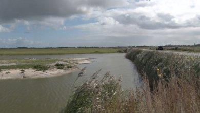 Photo of Geen nieuwe natuurgebieden meer op Texel