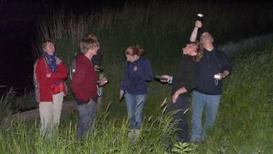 Photo of Nachtelijke wandeling in Eendenkooi 't Zand