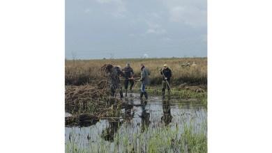 Photo of Extra geld voor groene vrijwilligers in Noord-Holland