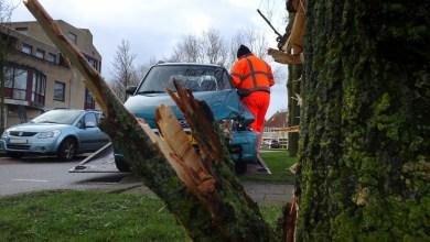 Photo of Auto uit de bocht en knalt tegen boom