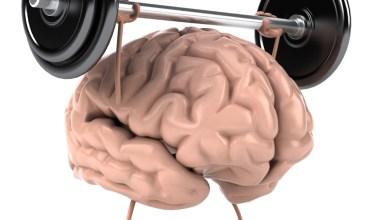 Photo of Hoe houd ik mijn hersenen gezond?