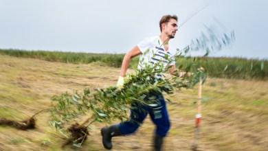 Photo of Landschap Noord-Holland zoekt groene trainees