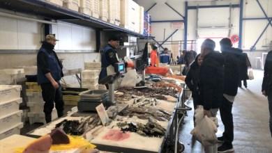 Photo of Verse vismarkt na 16 jaar nog steeds succesvol (video)