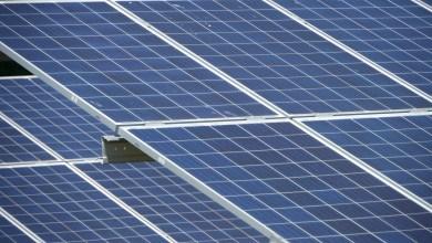 Photo of Gemeenteraad blijft tegen zonneparken op landbouwgrond