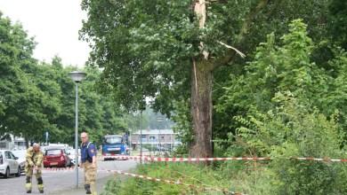 Photo of Inslag bliksem in boom Heilgharn
