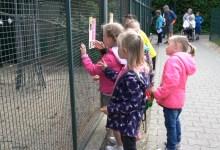 Photo of Dorper jeugd op bezoek bij Blanckendaell