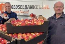 Photo of Boeren delen 16.000 appels uit aan de zorg (video)