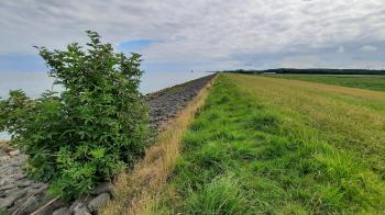 Ruim 1,5 kilometer over de dijk langs het IJsselmeer.