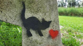 Is hij hier geweest, de wereldberoemde Banksy?