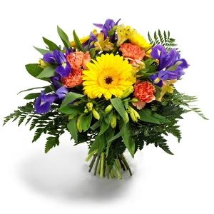 Regionsflorist  Blumenversand Orchideen  Blumen