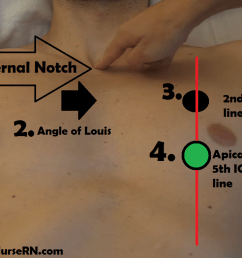 apical pulse location assessment site nursing [ 1344 x 766 Pixel ]