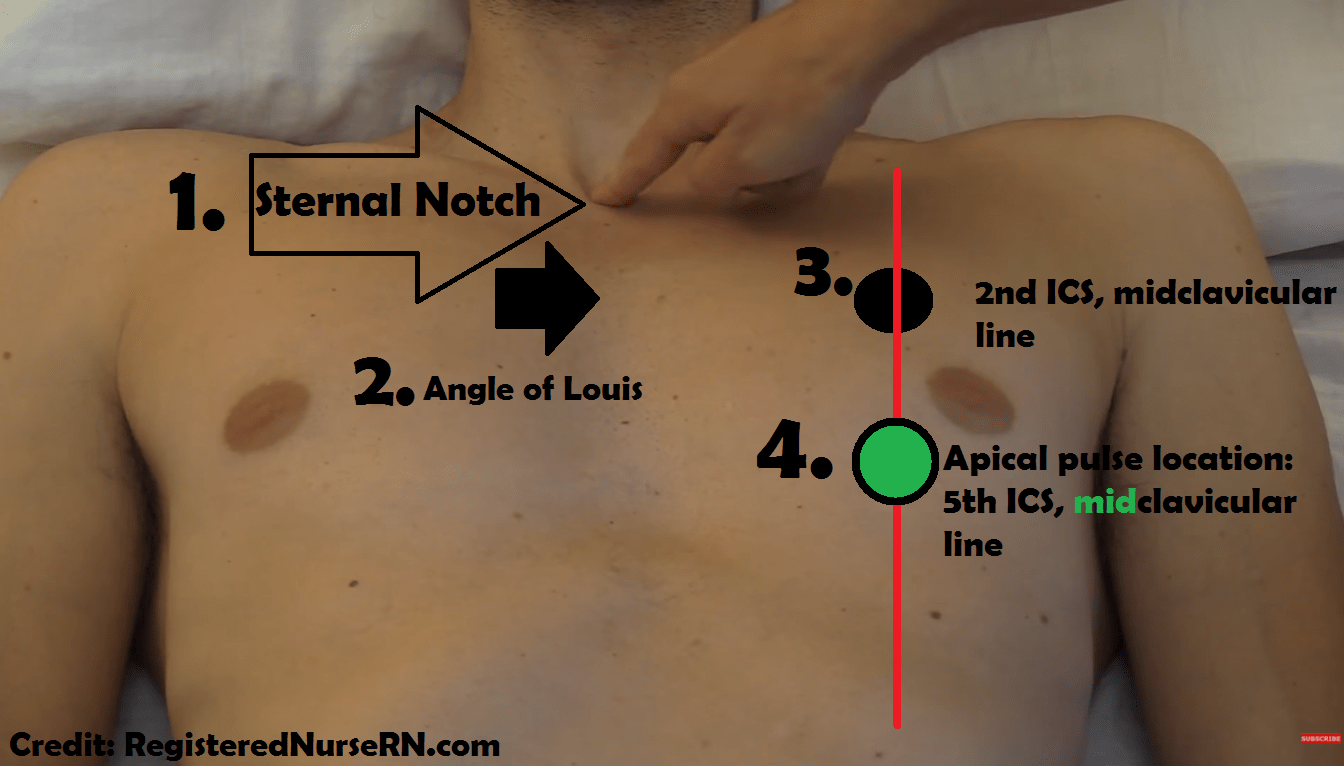 hight resolution of apical pulse location assessment site nursing