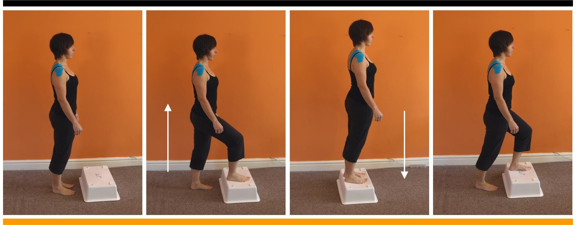 Anterior Knee Pain  Recommended Exercises  RehabExerciseorg