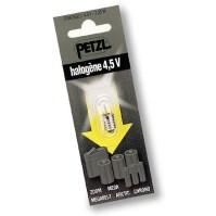 Petzl Headlamps at REI