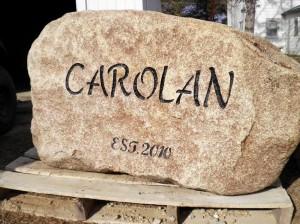 carolan rock