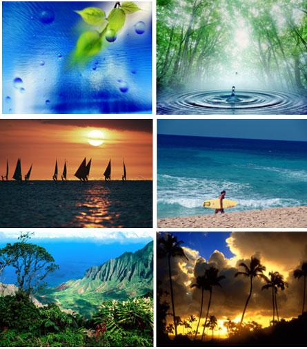 16 papéis de parede natureza exuberante