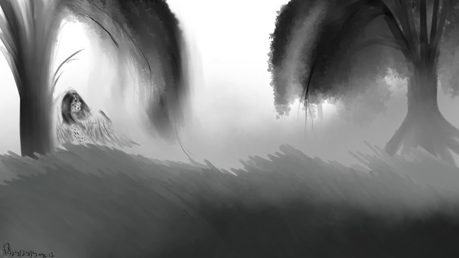 Wind through the willow trees