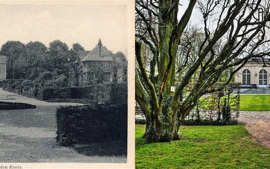 Le Parc Pierre-Schneiter, ancien Jardin-Ecole
