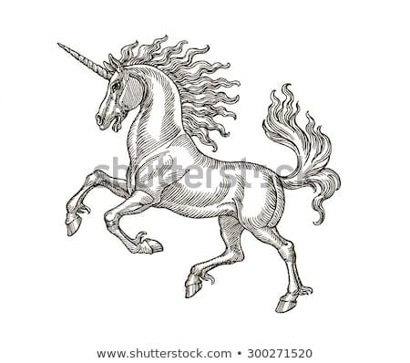 Vintage Unicorn Illustration