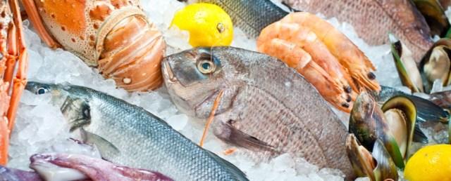 Risultati immagini per pesce surgelato