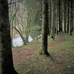 Luxemburgse Ardennen 5 dagen