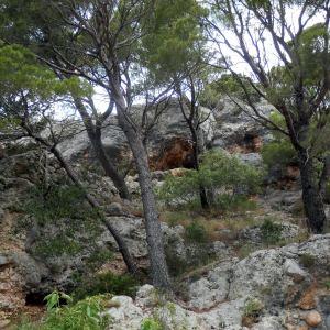 Single Reis wandelen in Kroatië 8 dagen