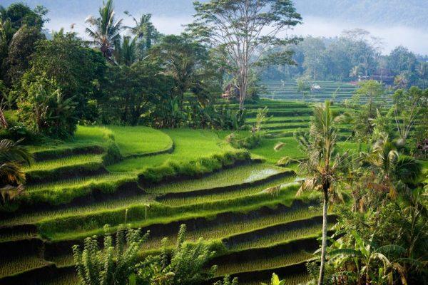 Verborgen plekjes van Bali