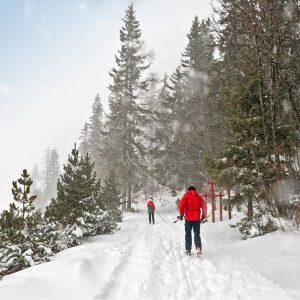 Langlaufreis en wandelreis Salzkammergut - Abersee