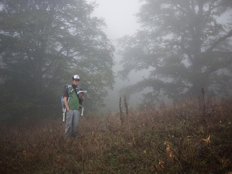 In den Nebelbergen