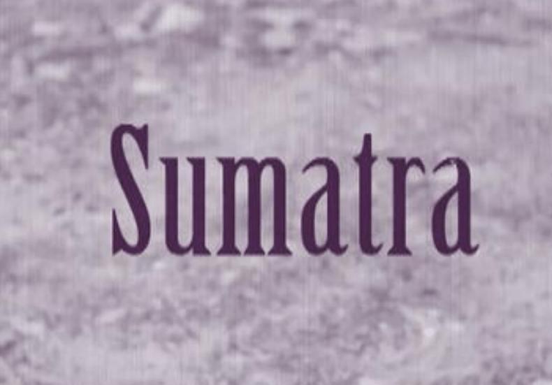 Sumatra: A Roadtrip
