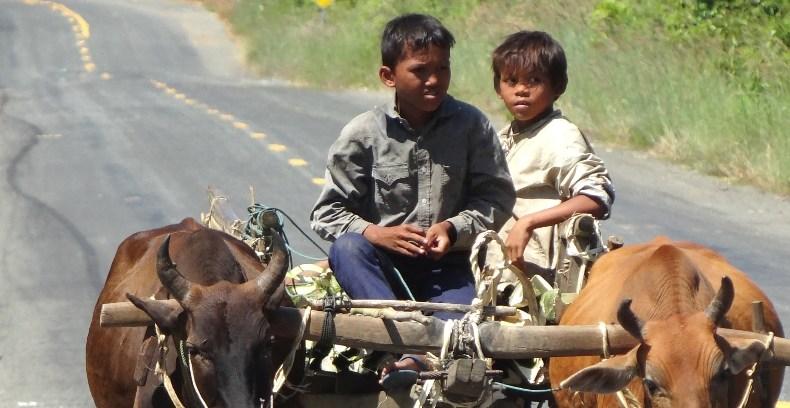 Einmal Kambodscha authentisch, bitte!