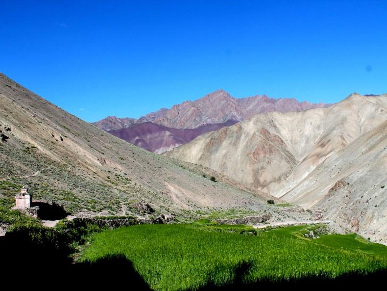 Der Markha-Treck in Ladakh