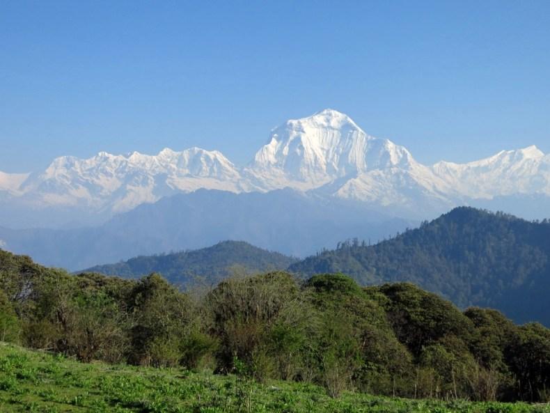 Schnaps, ein nepalesischer Cowboy & Wifi über den Wolken