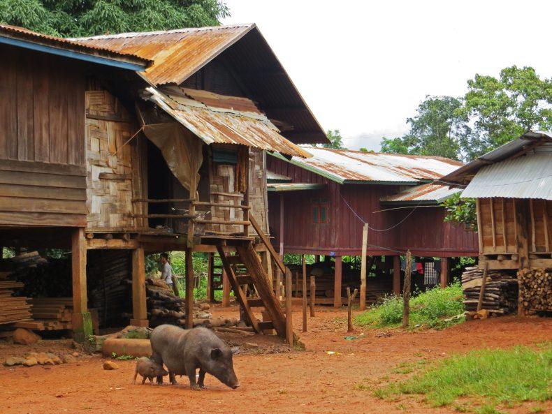 Opium für den Geist in Laos