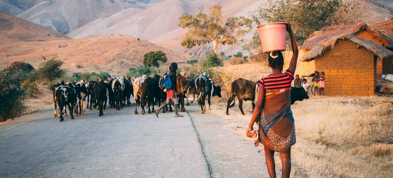 madagaskar reisebericht