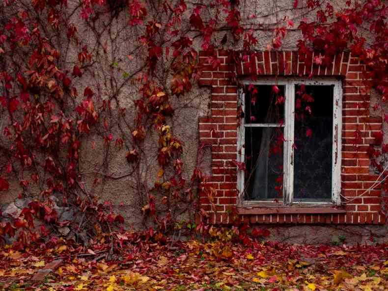 Herbstgefühle in Sigulda & Krimulda