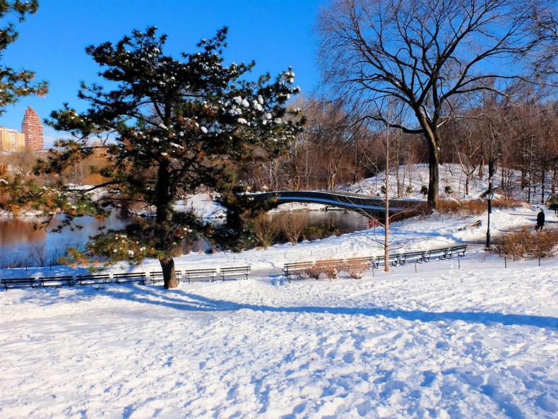 Winter in New York – ein echtes Winterwunderland