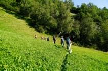 bergwaldprojekt-schweiz-val-medel - 13