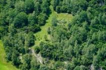 bergwaldprojekt-schweiz-val-medel - 17