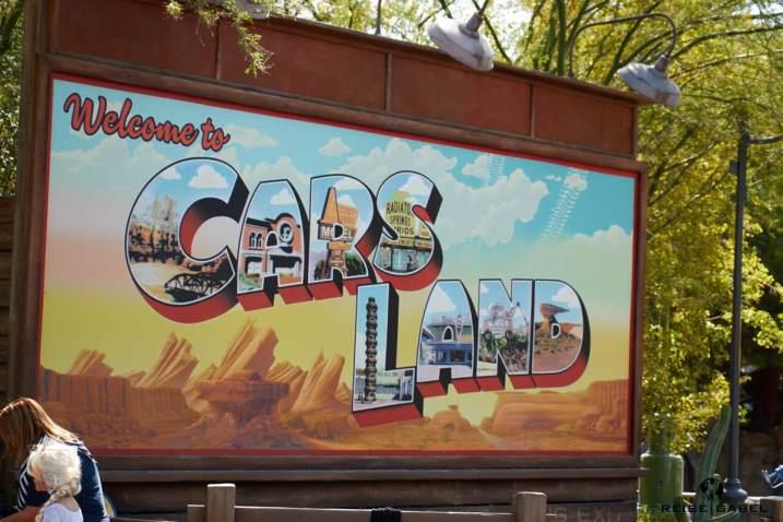 Disney California Adventure 17
