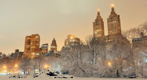 Central Park im Winter (Bigstock.com / Songquan Deng)