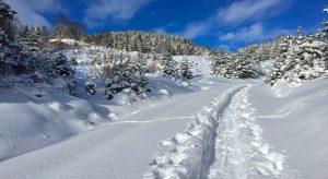 Um Landschaften wie diese voll genießen zu können, ist ein Wissen über mögliche Gefahren notwendig. (F.: Bigstockphoto.com/sassyphotos)