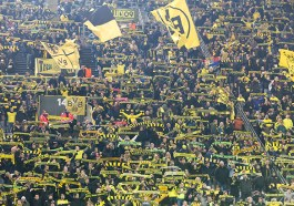 BVB-Fans im Signal-Iduna-Park (F: Bigstock / vverve)
