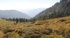 Ranger Touren Nockberge Kirchleitn Reisekompass