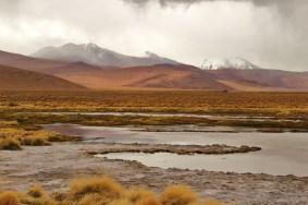 17 - laguna colorada_südbolivien (1024x683)