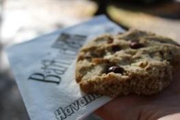 Canon 100 d - Tempelhof Berlin Herbst Cookie